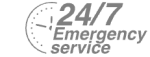24/7 Emergency Service Pest Control in Blackheath, SE3. Call Now! 020 8166 9746